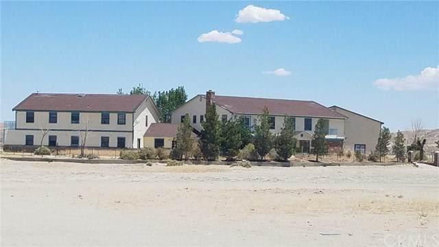 4206 Plato Street, El Mirage, CA 92301 (#OC20144599) :: The Laffins Real Estate Team