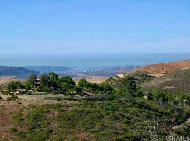 501 Deadwood Road, San Marcos, CA 92078 (MLS #ND20144655) :: Desert Area Homes For Sale