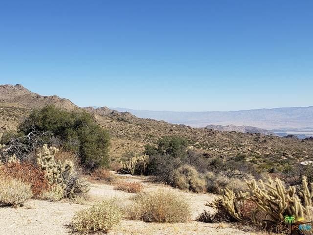 0 Avenida Elenita Lot 32, Mountain Center, CA 92561 (#20607624) :: Bathurst Coastal Properties