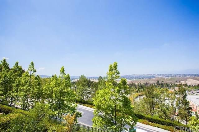851 Terrace Lane - Photo 1