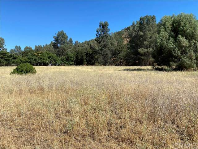 0 Parkhill Road, Santa Margarita, CA 93453 (#NS20147684) :: Sperry Residential Group