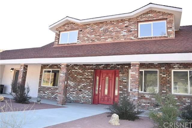 27506 Oak Spring Canyon Road, Canyon Country, CA 91387 (#SR20148000) :: Sperry Residential Group