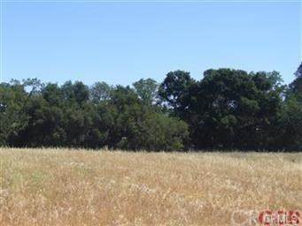 8 Championship Ln Drive, Templeton, CA 93465 (#SC20148025) :: Sperry Residential Group
