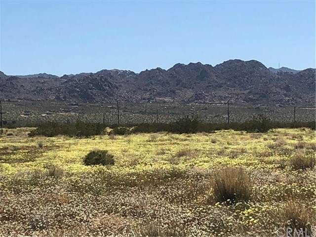 65123 Cobalt Road, Joshua Tree, CA 92252 (#JT20148356) :: Team Forss Realty Group