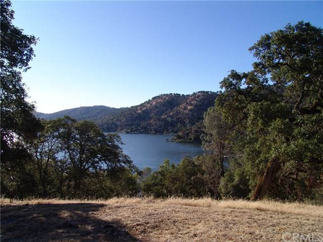 11150 North Drive, Clearlake, CA 95422 (#LC20149331) :: Steele Canyon Realty