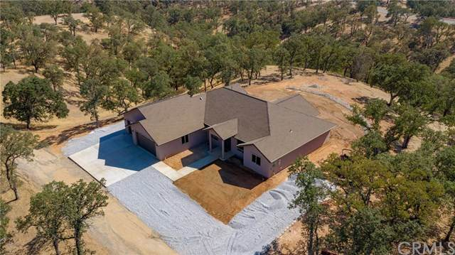 21735 Hidy Way, Red Bluff, CA 96080 (#SN20150014) :: Cal American Realty