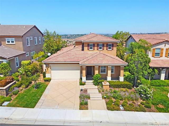 44245 Phelps Street, Temecula, CA 92592 (#SW20149598) :: Sperry Residential Group