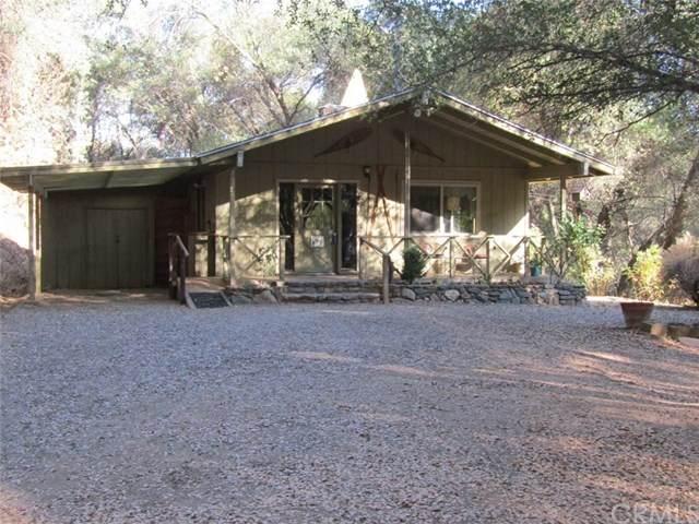 47022 Forest Glenn Road, Coarsegold, CA 93614 (#FR20151182) :: Sperry Residential Group
