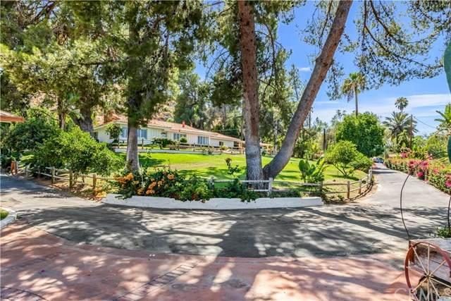41150 Quail Road, Hemet, CA 92544 (#LG20151236) :: Steele Canyon Realty