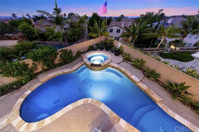 1002 Canvasback Court, Carlsbad, CA 92011 (#200036225) :: eXp Realty of California Inc.