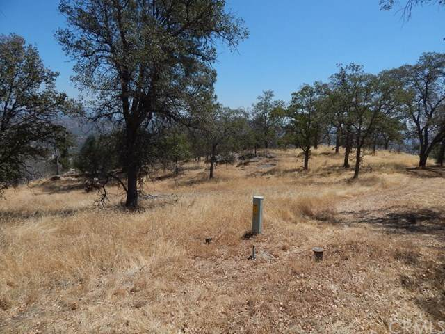 0-Lot 1392 Lilley Mountain Drive, Coarsegold, CA 93614 (#FR20153335) :: Sperry Residential Group