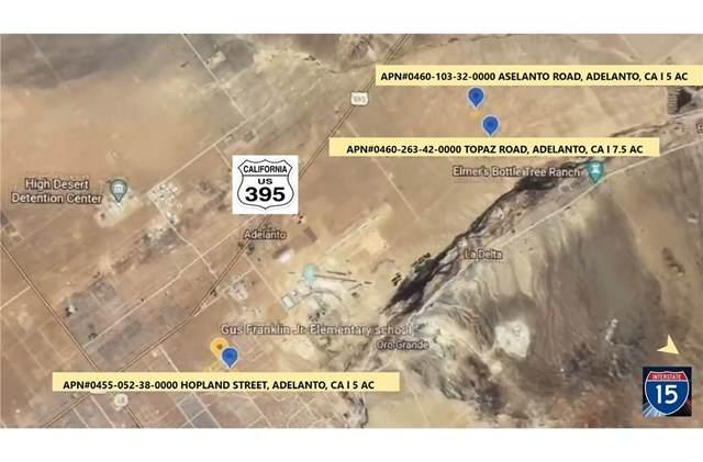 0 Adelanto Road, Adelanto, CA 92301 (#OC20142943) :: The Miller Group