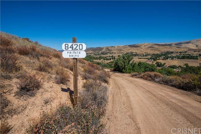 3420 Sierra Highway, Agua Dulce, CA 91390 (#SR20153995) :: Sperry Residential Group