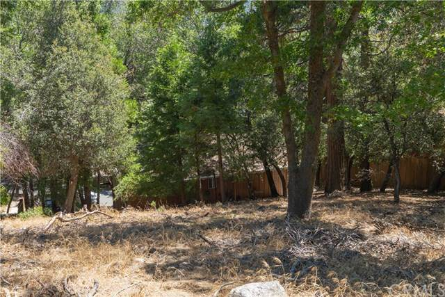 366 Weisshorn Drive, Crestline, CA 92325 (#EV20154058) :: The Costantino Group | Cal American Homes and Realty