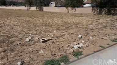 1530 E Marshall Boulevard, San Bernardino, CA 92404 (#IV20152537) :: Mark Nazzal Real Estate Group
