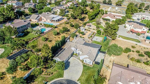 41043 Heights Drive, Palmdale, CA 93551 (#SR20153936) :: Allison James Estates and Homes