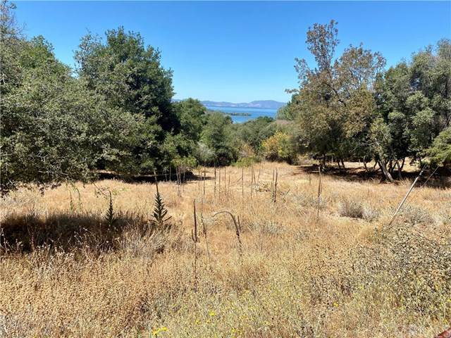 3515 Westridge Drive, Kelseyville, CA 95451 (#LC20154563) :: Sperry Residential Group