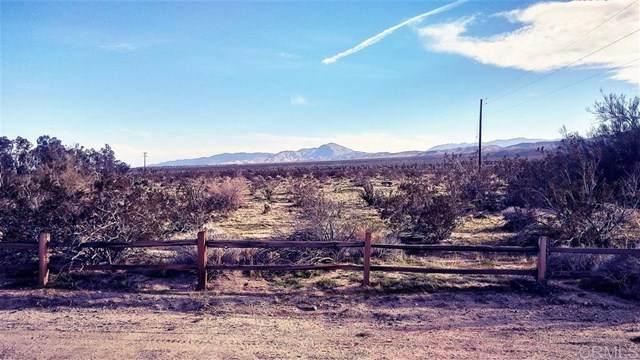 San Pablo Rd, Borrego Springs, CA 92004 (#200036773) :: Zutila, Inc.