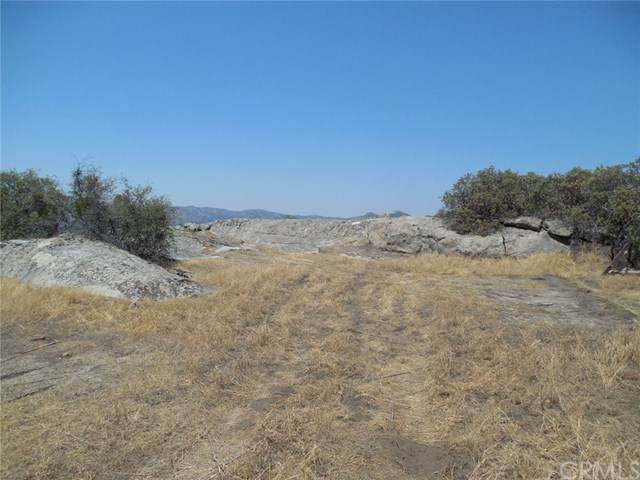 3991 Silver Bar Road, Mariposa, CA 95338 (#MP20154424) :: Compass