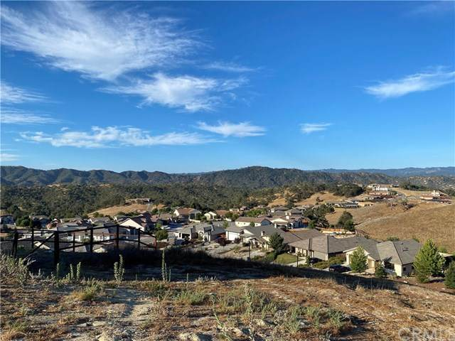 2425 Auburn Drive, Paso Robles, CA 93446 (#NS20153705) :: Allison James Estates and Homes