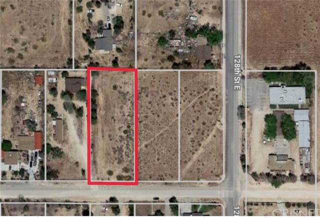 12731 E Avenue V-12, Pearblossom, CA 93553 (#SR20155153) :: RE/MAX Empire Properties