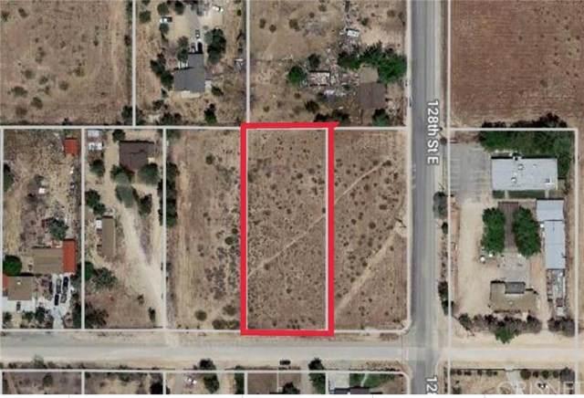 12741 E Avenue V-12, Pearblossom, CA 93553 (#SR20155370) :: RE/MAX Empire Properties