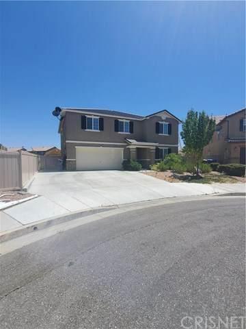 43238 Elizabeth Lane, Lancaster, CA 93535 (#SR20156101) :: Cal American Realty