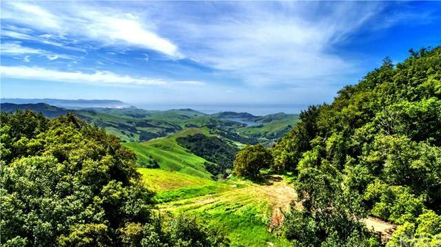 0 Old Creek Road, Cayucos, CA 93430 (#NS20154532) :: Realty ONE Group Empire