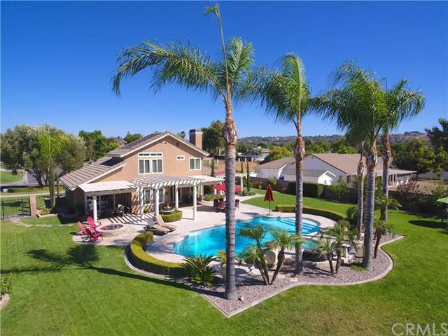 7919 Woodland Drive, Riverside, CA 92506 (#SW20155380) :: Realty ONE Group Empire