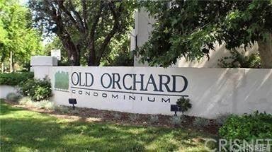 23515 Lyons Avenue #125, Valencia, CA 91355 (#SR20156761) :: Sperry Residential Group