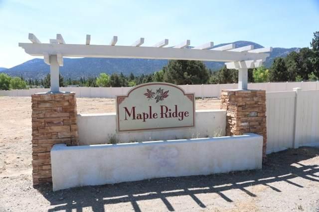 374 Maple Ridge, Big Bear, CA 92314 (#EV20153735) :: Sperry Residential Group
