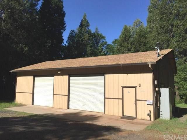 14559 Skyway, Magalia, CA 95954 (#SN20157529) :: Sperry Residential Group