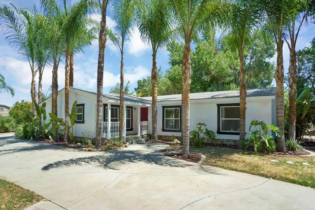 32776 Skylark Drive, Lake Elsinore, CA 92530 (#219047353DA) :: Allison James Estates and Homes