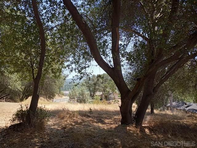 0 Live Oak Dr - Photo 1