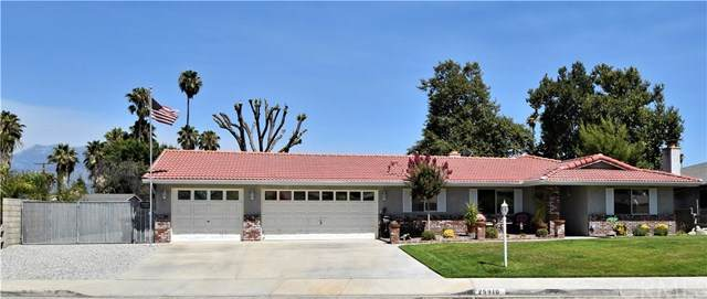 25910 Casa Loma Court, Hemet, CA 92544 (#SW20159810) :: Allison James Estates and Homes