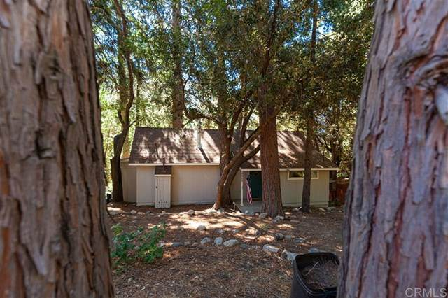 5965 Robin Oak Drive, Angelus Oaks, CA 92305 (#200038014) :: RE/MAX Empire Properties