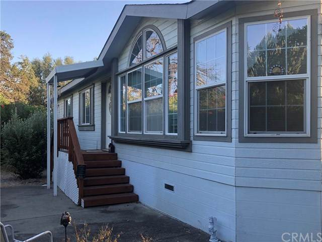 266 Lasso, Oroville, CA 95966 (#OR20159574) :: Team Forss Realty Group