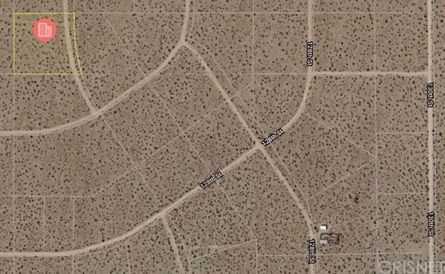0 130th St / Cal City Bl, Edwards, CA 93524 (#SR20158525) :: Zutila, Inc.