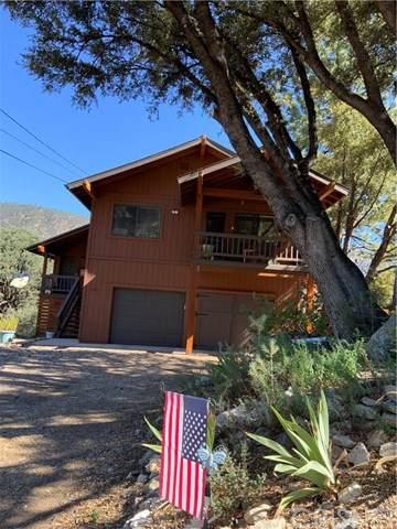 15821 Zurich Way, Pine Mountain Club, CA 93222 (#SR20158038) :: Allison James Estates and Homes