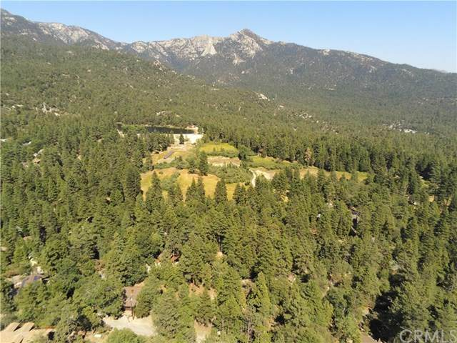 0 Scenic View, Idyllwild, CA 92549 (#OC20160717) :: The Laffins Real Estate Team