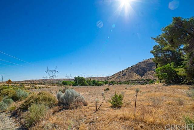 34270 Cheseboro Road, Palmdale, CA 93552 (#SR20160864) :: Sperry Residential Group