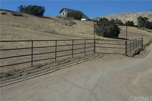 35483 Anthony Road, Agua Dulce, CA 91390 (#SR20161101) :: Sperry Residential Group