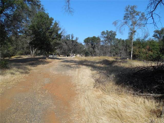 4050 Live Oak Road, Mariposa, CA 95338 (#MP20161343) :: Sperry Residential Group
