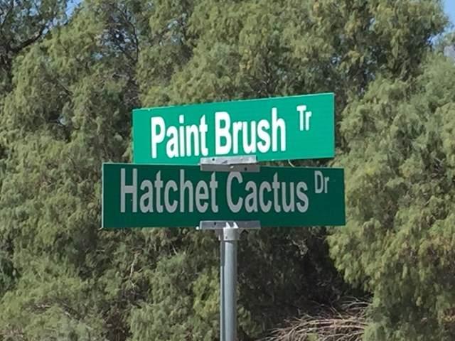 0 Hatchet Cactus Drive - Photo 1