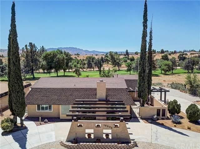 18603 Centennial Street, Hesperia, CA 92345 (#AR20155376) :: Sperry Residential Group