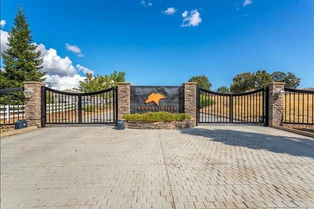 73 Emerald Downs Ln, Cottonwood, CA 96022 (#200038356) :: Sperry Residential Group