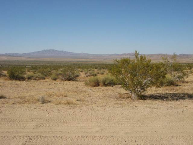 0 Joshua Tree Road - Photo 1