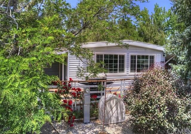 391 Montclair Drive #216, Big Bear, CA 92314 (#EV20141375) :: Sperry Residential Group