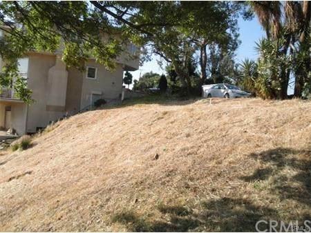 858 Ave. 37, Los Angeles (City), CA 90065 (#AR20162168) :: Hart Coastal Group