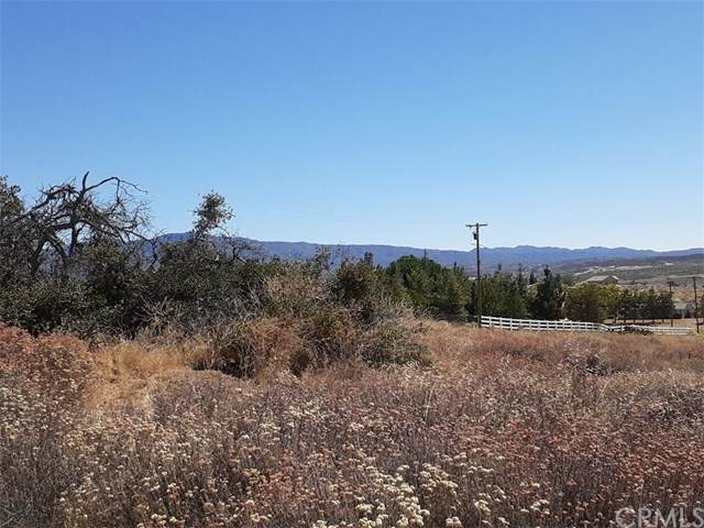 740 Rolling Hills Drive, Aguanga, CA 92536 (#SW20162147) :: Allison James Estates and Homes